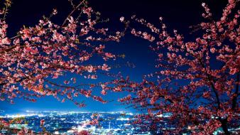 Japan tokyo cherry blossoms city lights cityscapes wallpaper