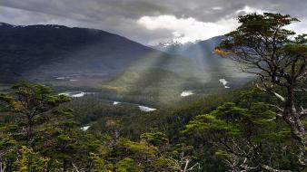Trees forests gray valleys rivers patagonia sunbeams wallpaper