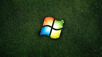 Windows logo nature wallpaper