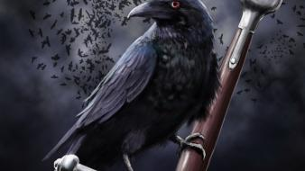 Artwork birds crows wallpaper