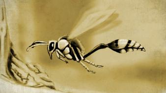 Artwork digital art drawings insects sepia Wallpaper
