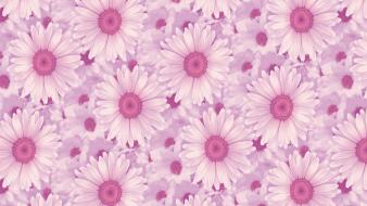 Backgrounds daisy flowers patterns pink wallpaper