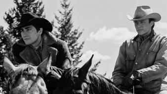 Brokeback mountain heath ledger jake gyllenhaal cowboys grayscale wallpaper