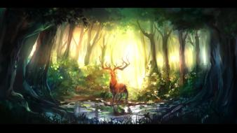 Deer forests sunlight water wallpaper