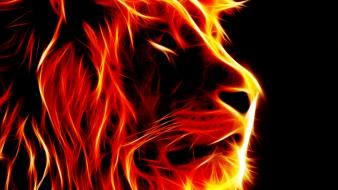 Fire pc lions wallpaper