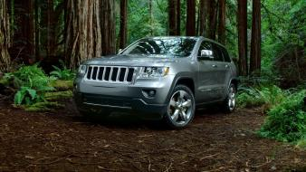 Grand cherokee jeep trees wallpaper