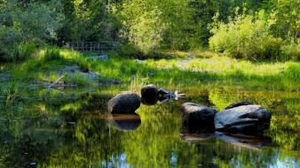 Green lagoon lakes landscapes nature wallpaper