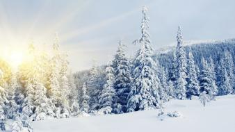 Landscapes mountains nature snow snowy trees wallpaper