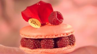 Macaron pierre hermé raspberries sweets (candies) wallpaper