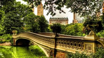 Central park bow wallpaper