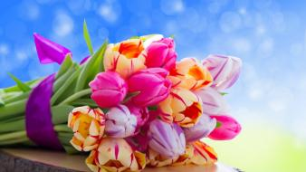 Cute colorful flowers wallpaper