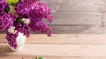 Flowers lilac vases wooden planks wallpaper