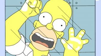 Homer simpson the simpsons cartoons wallpaper