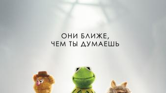 Kermit the frog miss piggy muppet show wallpaper