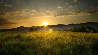 Sun fields landscapes nature wallpaper