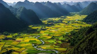 Viet nam agriculture fields forests green Wallpaper