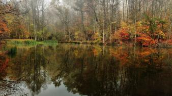 Autumn green lakes landscapes mist wallpaper