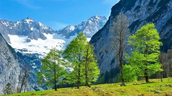 Blue green mountains trees white wallpaper