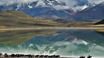 Chile patagonia clouds horses lagoon wallpaper