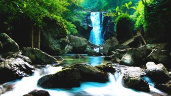 Green forest waterfall wallpaper