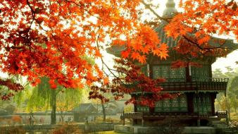 Japan seoul south korea destination wallpaper