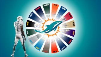 Miami dolphins 2013 wallpaper
