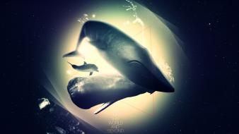 Animals dolphins outer space surreal text wallpaper