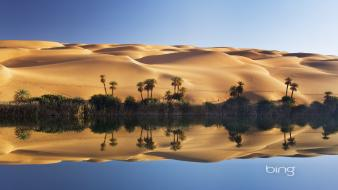 Bing deserts landscapes palm trees reflections wallpaper