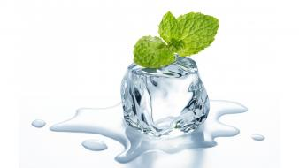 Ice cubes melting mint Wallpaper