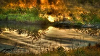 Earth grass nature reflections water wallpaper
