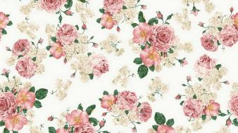 Floral texture flowers patterns roses Wallpaper