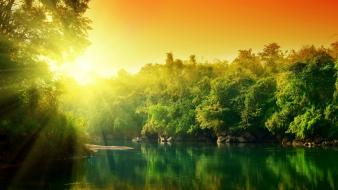 Forest river sunset wallpaper