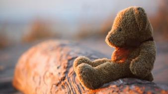 Teddy bear alone wallpaper
