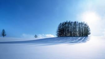 Winter hd s wallpaper