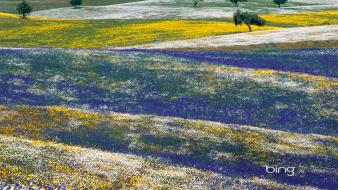 Alentejo bing portugal landscapes meadows wallpaper