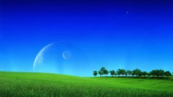 Green nature blue sky wallpaper