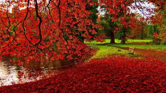 Romantic autumn wallpaper