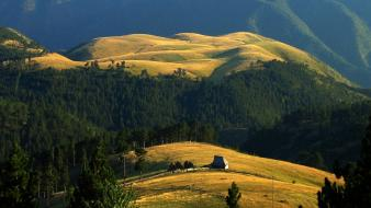 Serbia dawn fences fields forests wallpaper