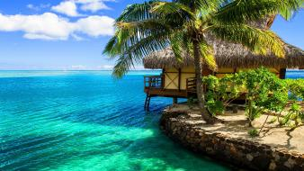 Tropical coast wallpaper