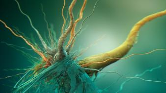 3d abstract neurons Wallpaper