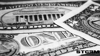 Black dollar bills money white wallpaper