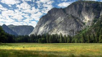California usa yosemite national park fields forests wallpaper
