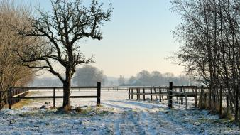 Fences landscapes natural scenery nature snow wallpaper