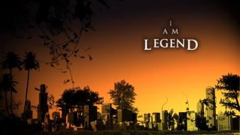 I am legend film movies wallpaper