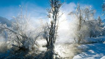 Landscapes nature snow trees winter Wallpaper