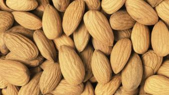 Almond food fruits nature nuts wallpaper