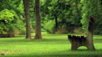 Bench grass green outdoors park wallpaper