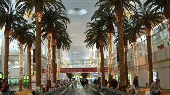 Dubai airports interior palm trees Wallpaper