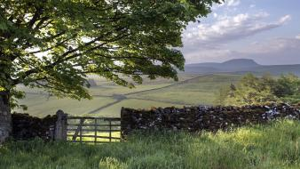 Fields hills moss nature stone wall wallpaper