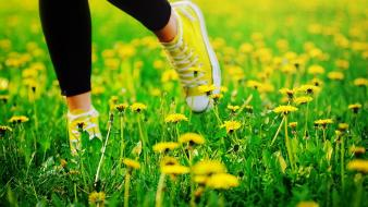 Grass shoes yellow flowers wallpaper